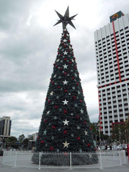 Christmas Tree in Brisbane 2011